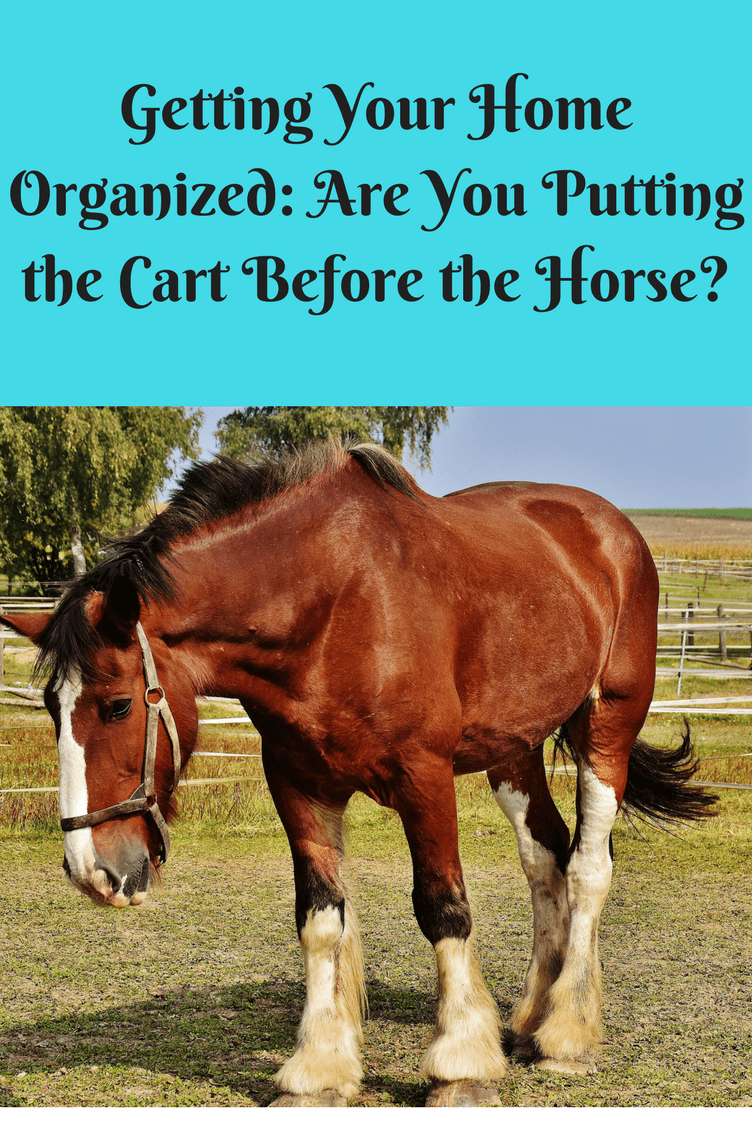 Getting Your Home Organized Are You Putting The Cart